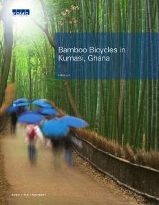 KPMG Bamboo Bike White Paper